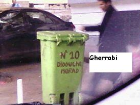 أصبح شهدائ الجزائر الأبرار يُكتبون على سلل القمامــ ــة 111